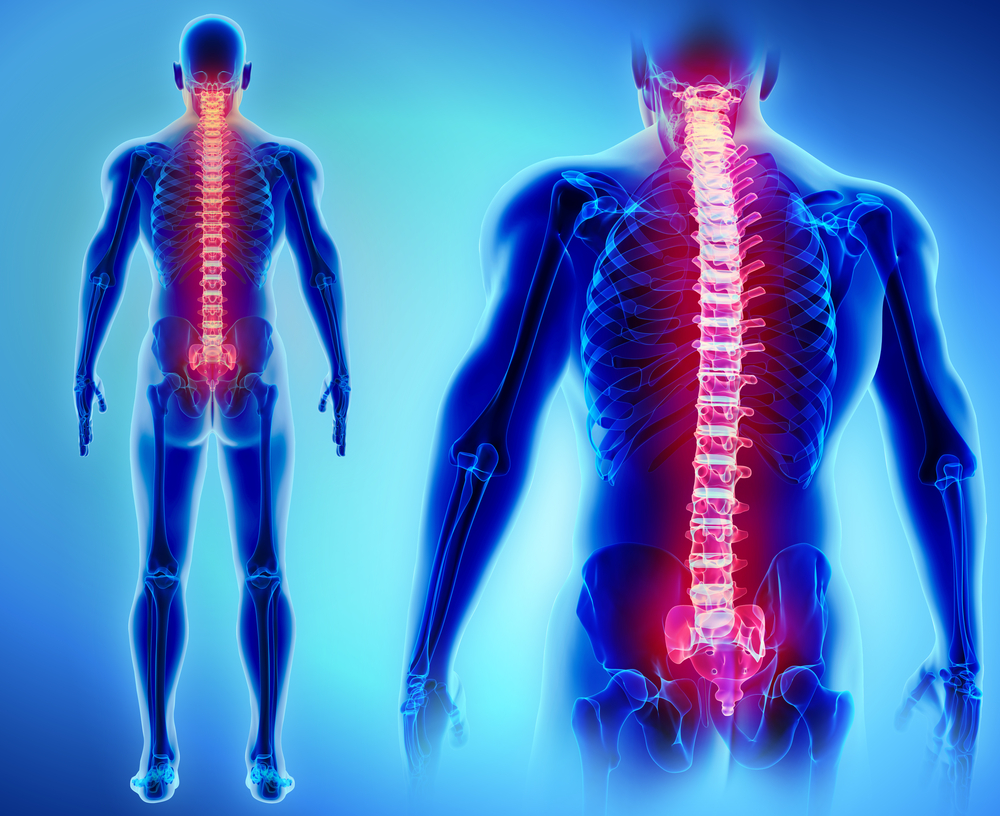 Griffin Brain and Spinal Injury Attorney