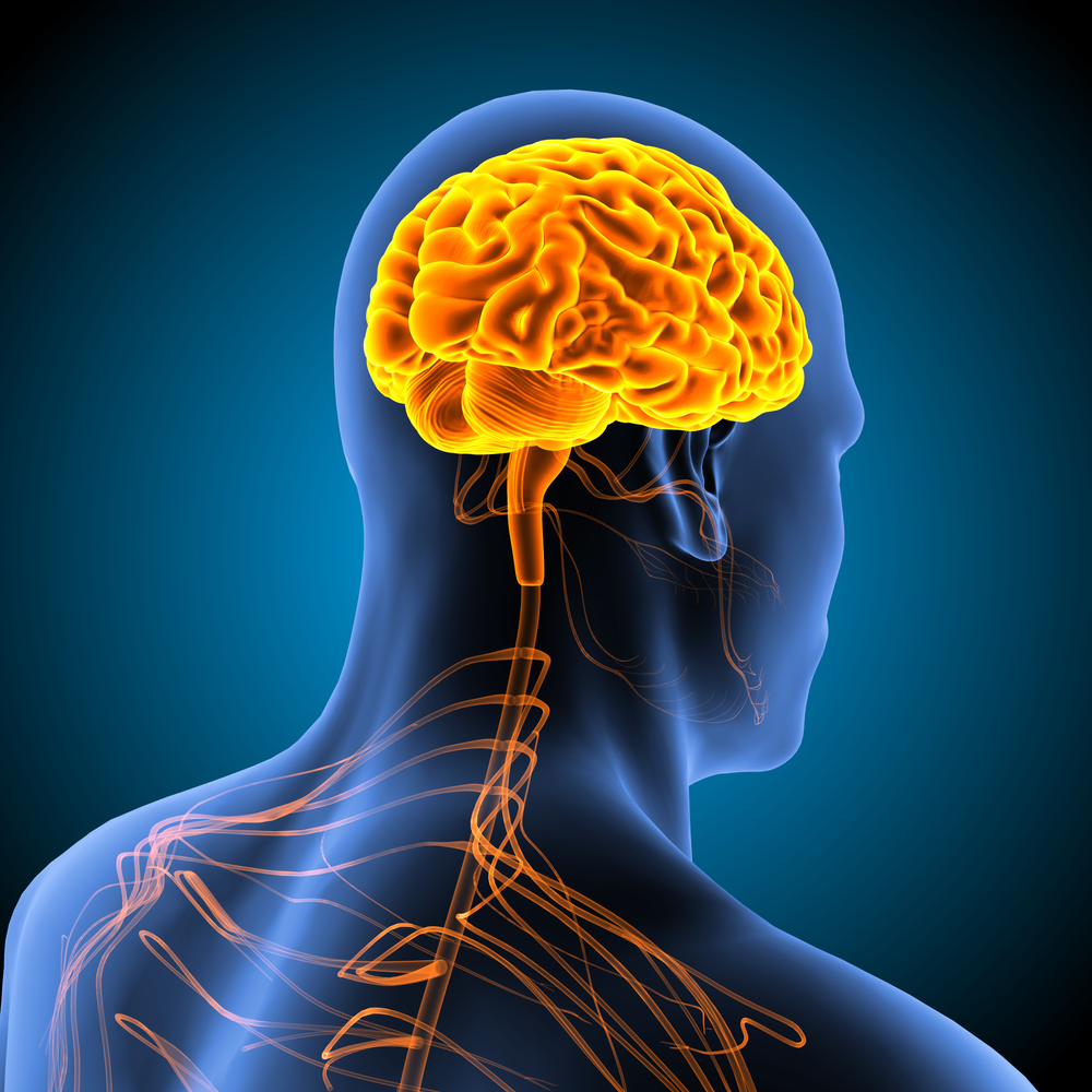 Peachtree City Brain and Spinal Injury Attorney