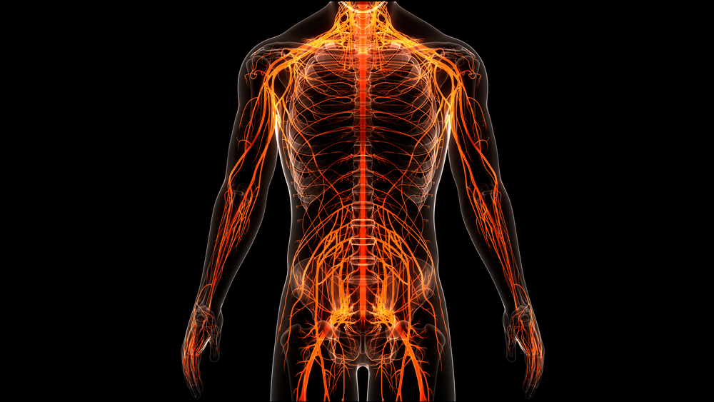 Treatment for Brain and Spinal Injuries in Stockbridge