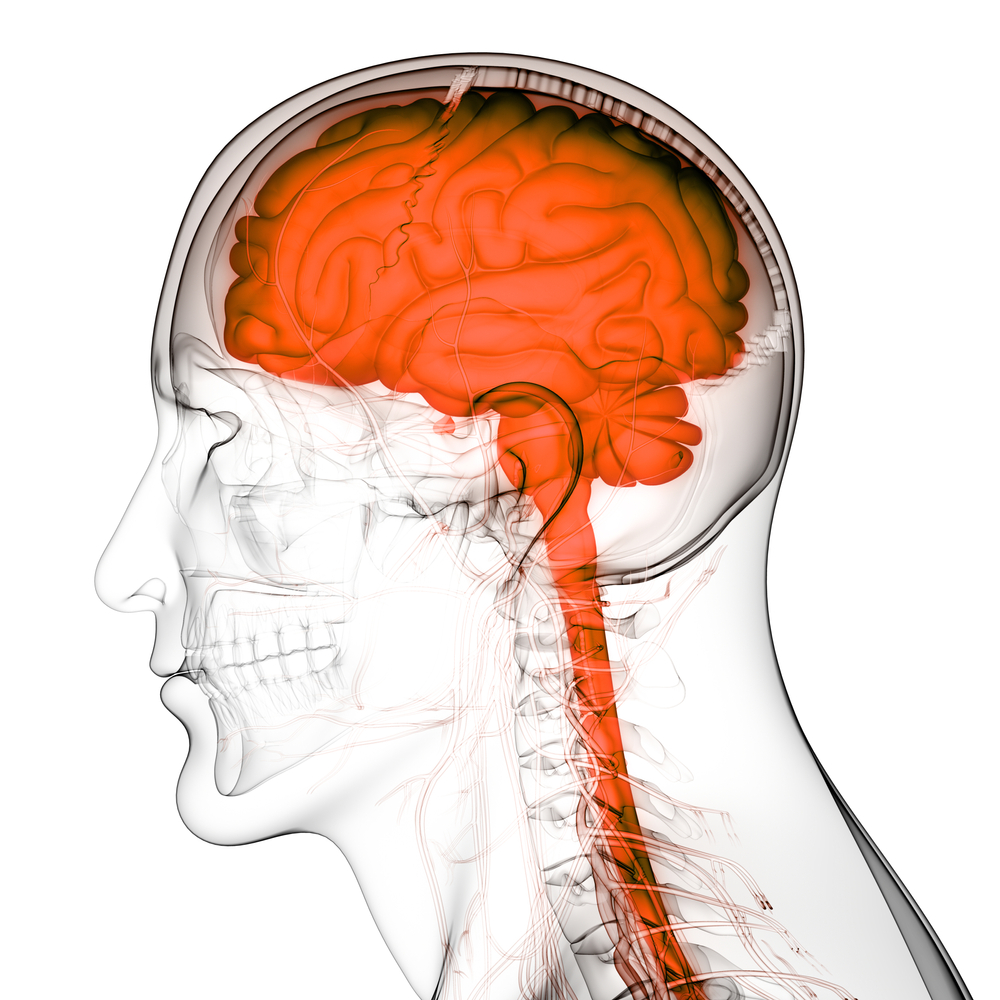 Covington Brain And Spinal Injury Attorney